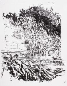 """n°2"" |  cm 60x50 | Lithography | 2013"