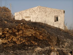 """After the fire"" 
