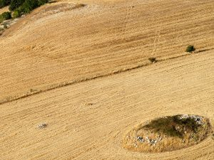 """Sicilian hinterland IV "" | 29,7x21 cm | Photography | 2008"